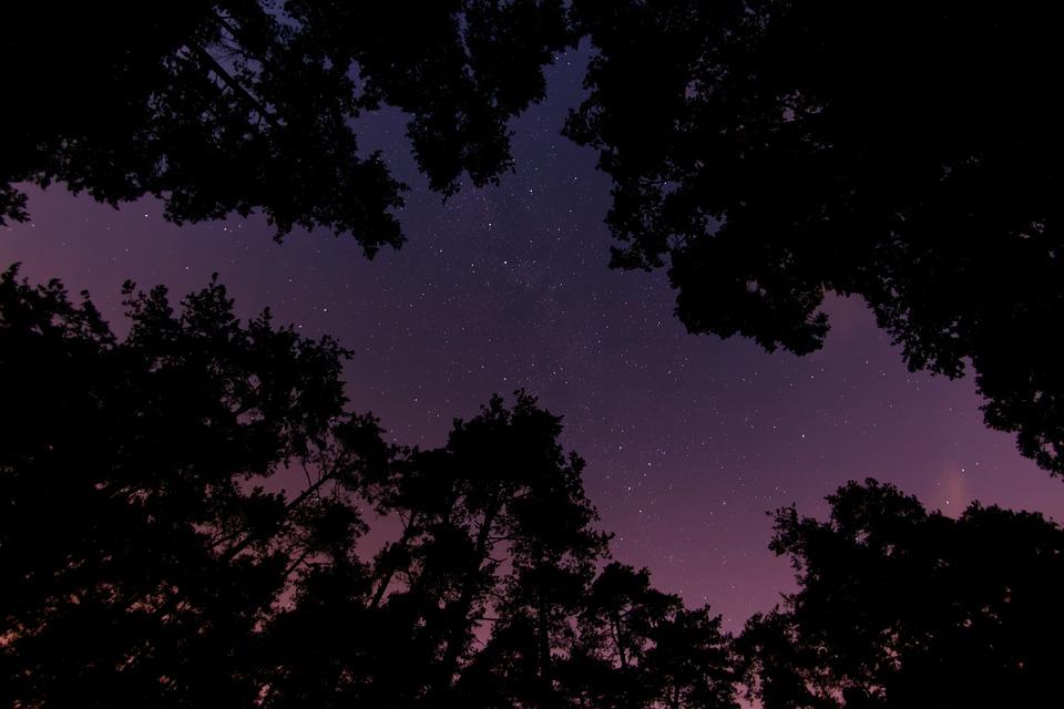 wanderlust-wednesday-star-struck-silhouette