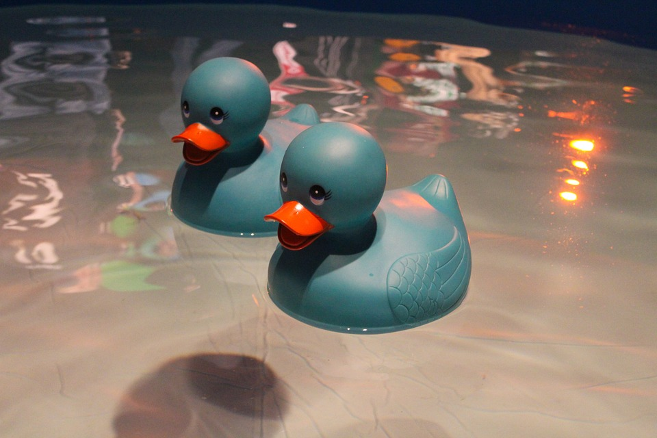 friday-fictioneers-country-roads-ducks