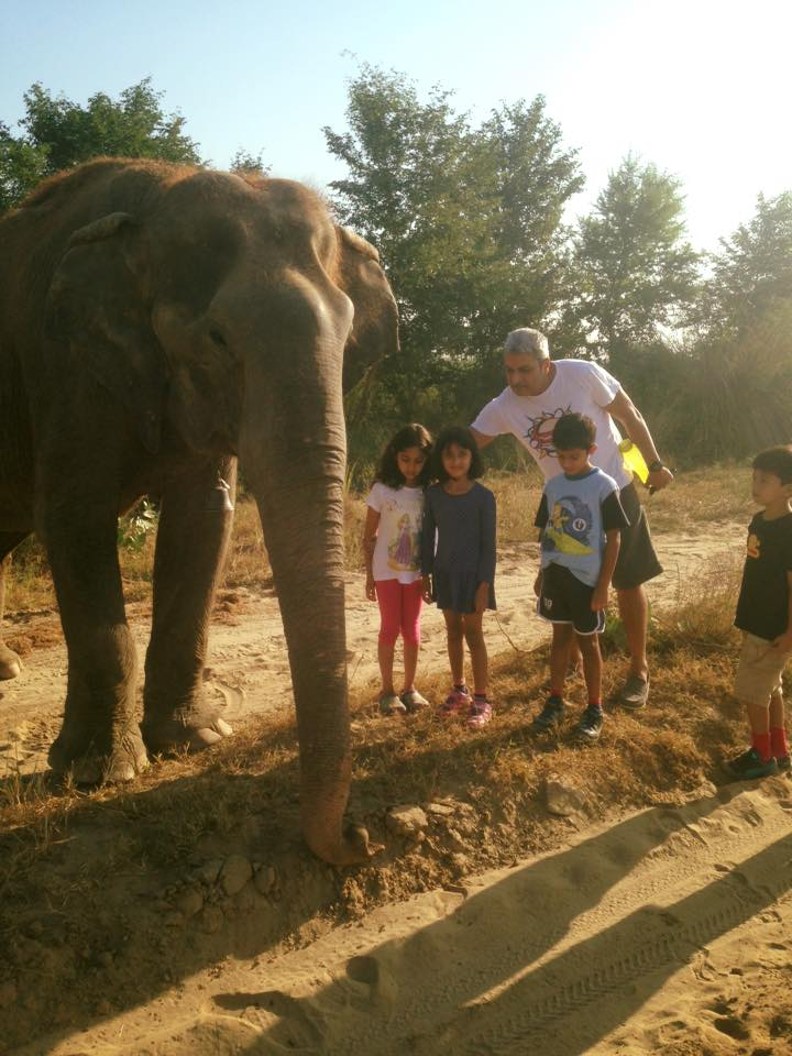 a-to-z-challenge-2018-april-anecdotes-natasha-musing-R-reminiscing-the-yesteryears-elephants