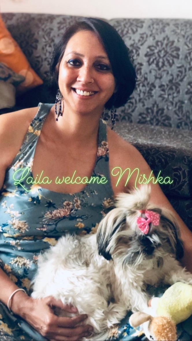 wordless-wednesday-natasha-musing-mishkas-mothers-day-homecoming-shitzu