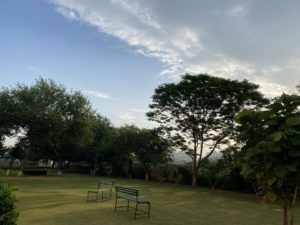 wordless-wednesday-natasha-musing-speeches-with-the-skies-trees-skies