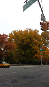 Traffic light at Central Park West with couple and pedestrian walking