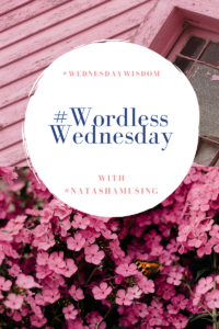 #WordlessWednesday- #WednesdayWisdom- logo