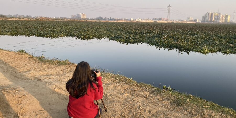 Birding- Lake