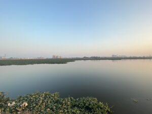 Basai Wetland - horizon