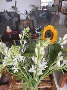 Flowers- Tube Roses and Sunflower