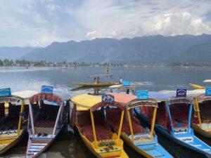 Dal Lake- Shikaras